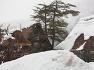 [시라카와고 설경] 눈을 보러 갔지만, 종일토록 내리는 시라카와고의 눈(雪)을 찍느라 지치다 / 토함