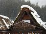 [설국] 시라카와고의 독특한 초가집은 지붕 모양이 마치 합장하는 손과 비슷하다고 해서 일본인들은 갓쇼즈쿠리(合掌造り)라 부른다 / 토함
