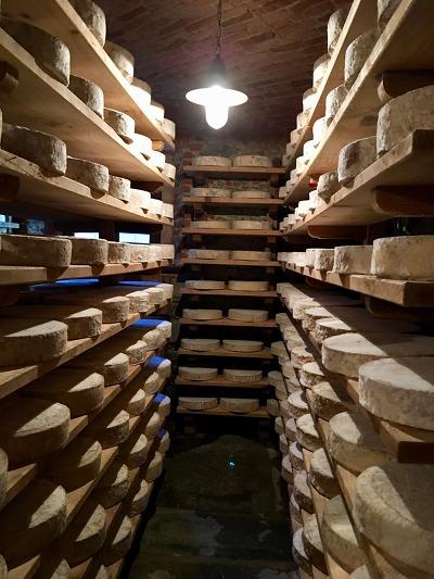 바롤로,바르바레스코 와이너리 투어 & BRA Cheese 축제 투어(2박 3일)
